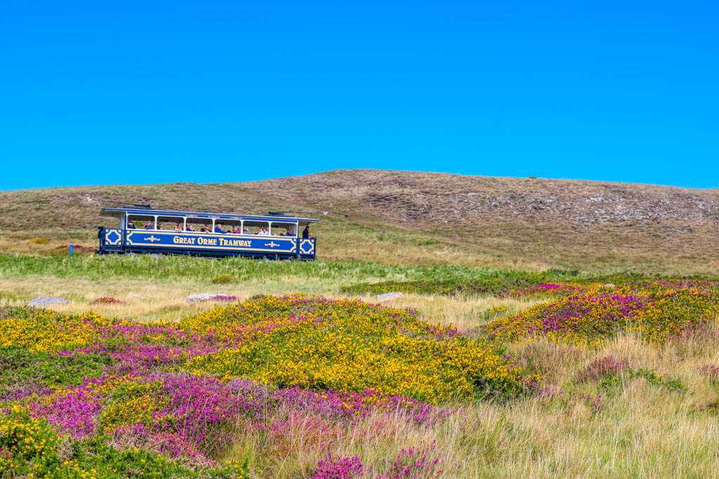 Great Orme tram ride