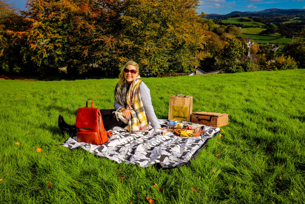 best place to have a picnic in Llandeilo Wales