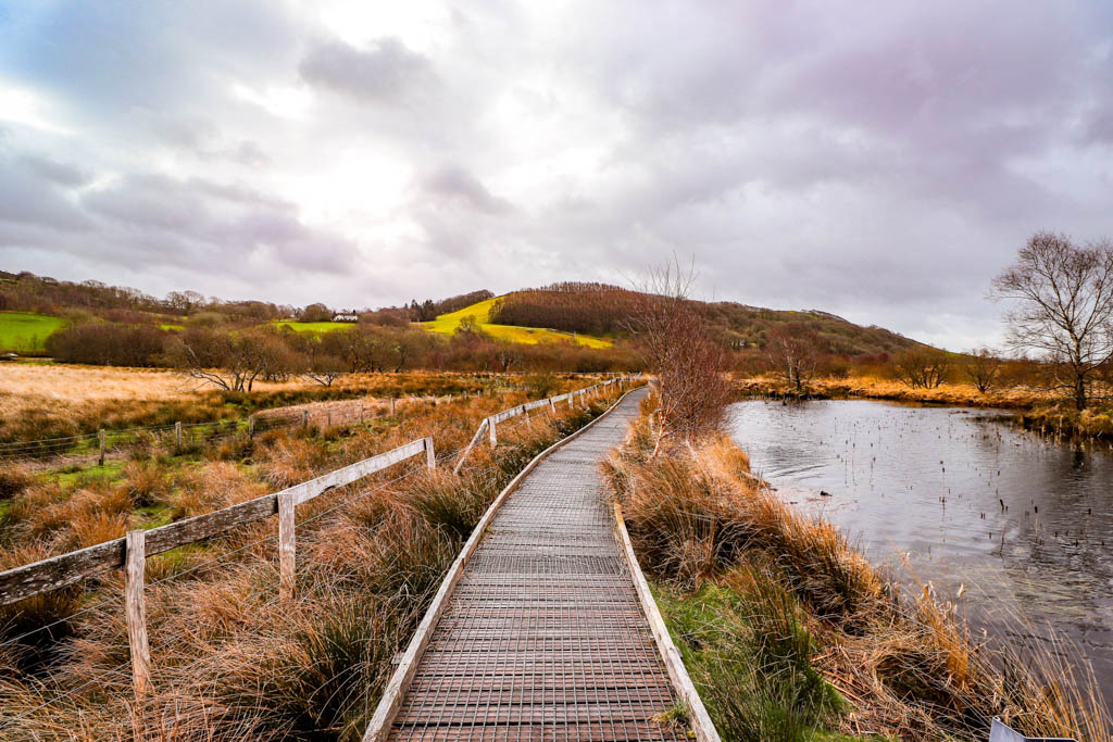 Cors Caron National Nature Reserve raised bog Wales