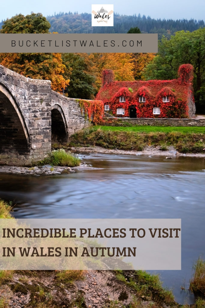 Photograph dazzling autumn displays in Wales with our guide to incredible places to visit in Wales in Autumn. We give you the best places for fall colours and autumn activities.