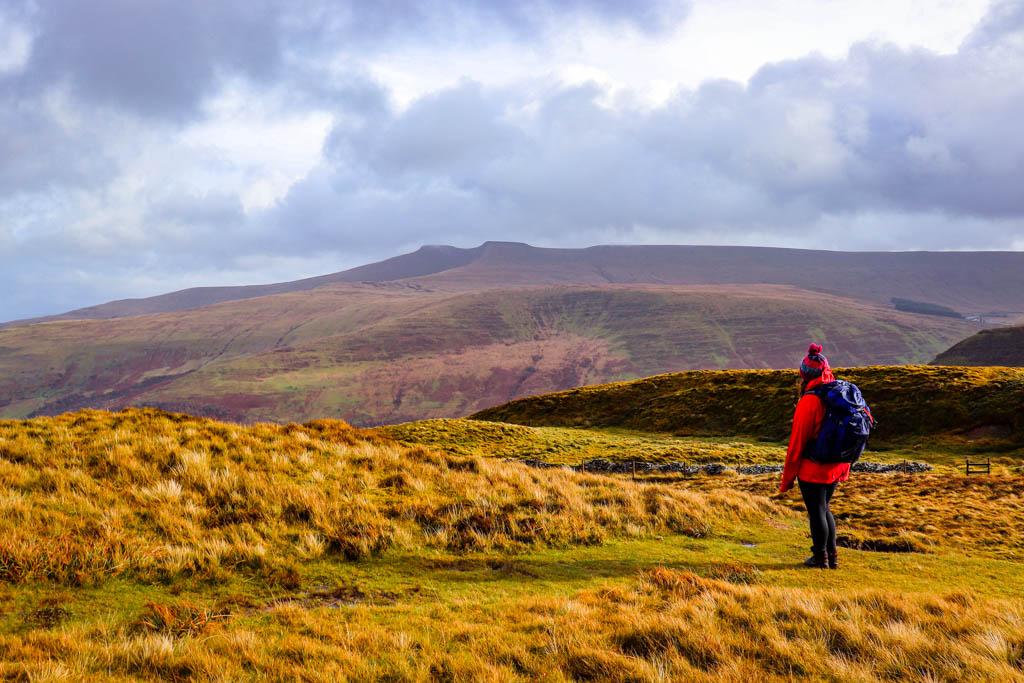 Hiking Craig Cerrig-gleisiad in Brecon Beacons | 3-mile loop walk