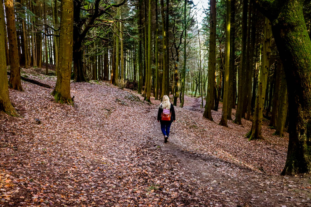 Local walks in Cardiff to get you outdoors and active
