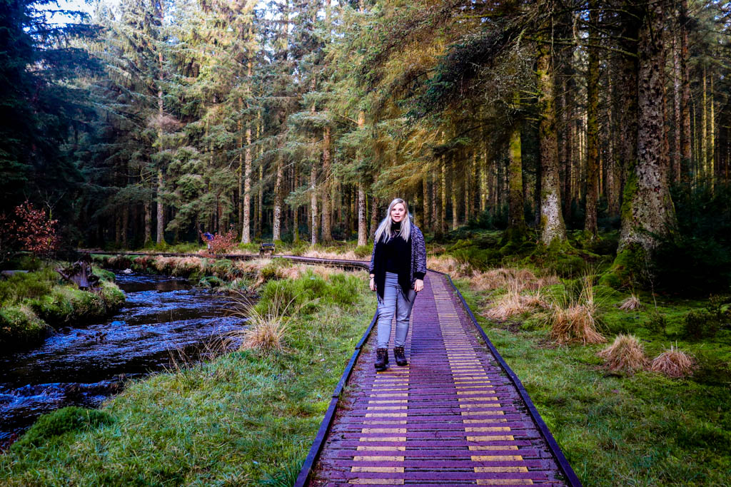 Hafren Forest Llanidloes
