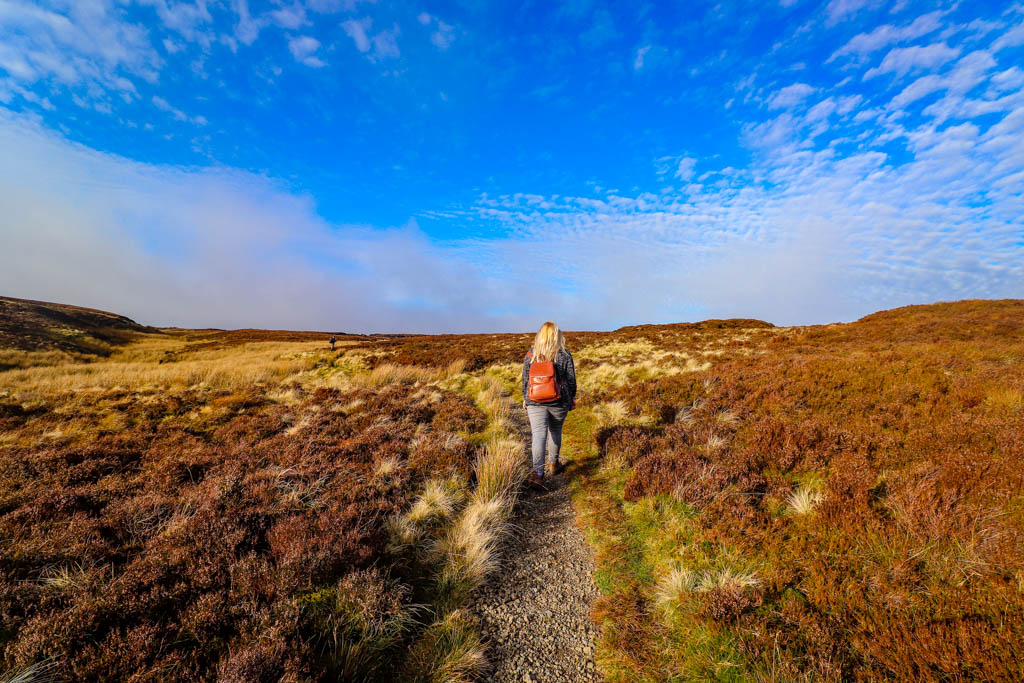 Walks near Llanidloes