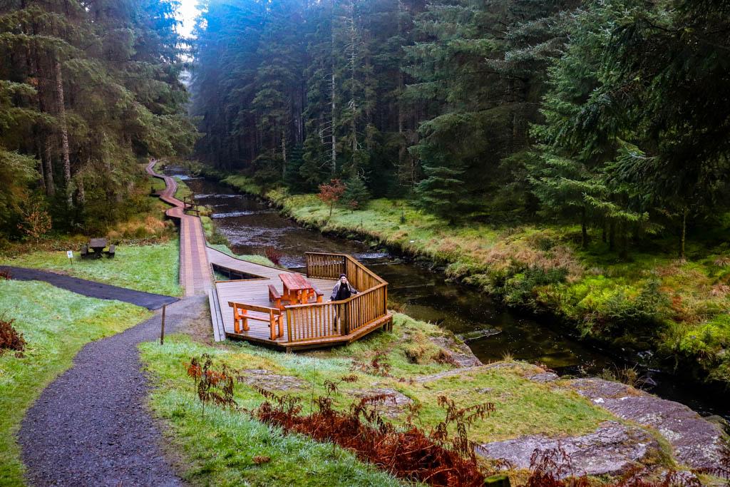 Hafren forest walks Llanidloes